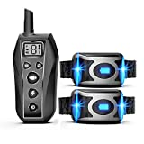 GROOVYPETS 2000 Feet Remote Dog Training Shock Collar w/Safe Humane Beep, Vibration, Static Shock and Waterproof Long Lasting Rechargeable Battery for Small Medium Large Dogs (Two Dog Kit)