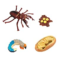 freneci 全2選択 動物の成長サイクル 子供おもちゃ 知育玩具 保育園教具 女の子 男の子 プレゼント - 昆虫