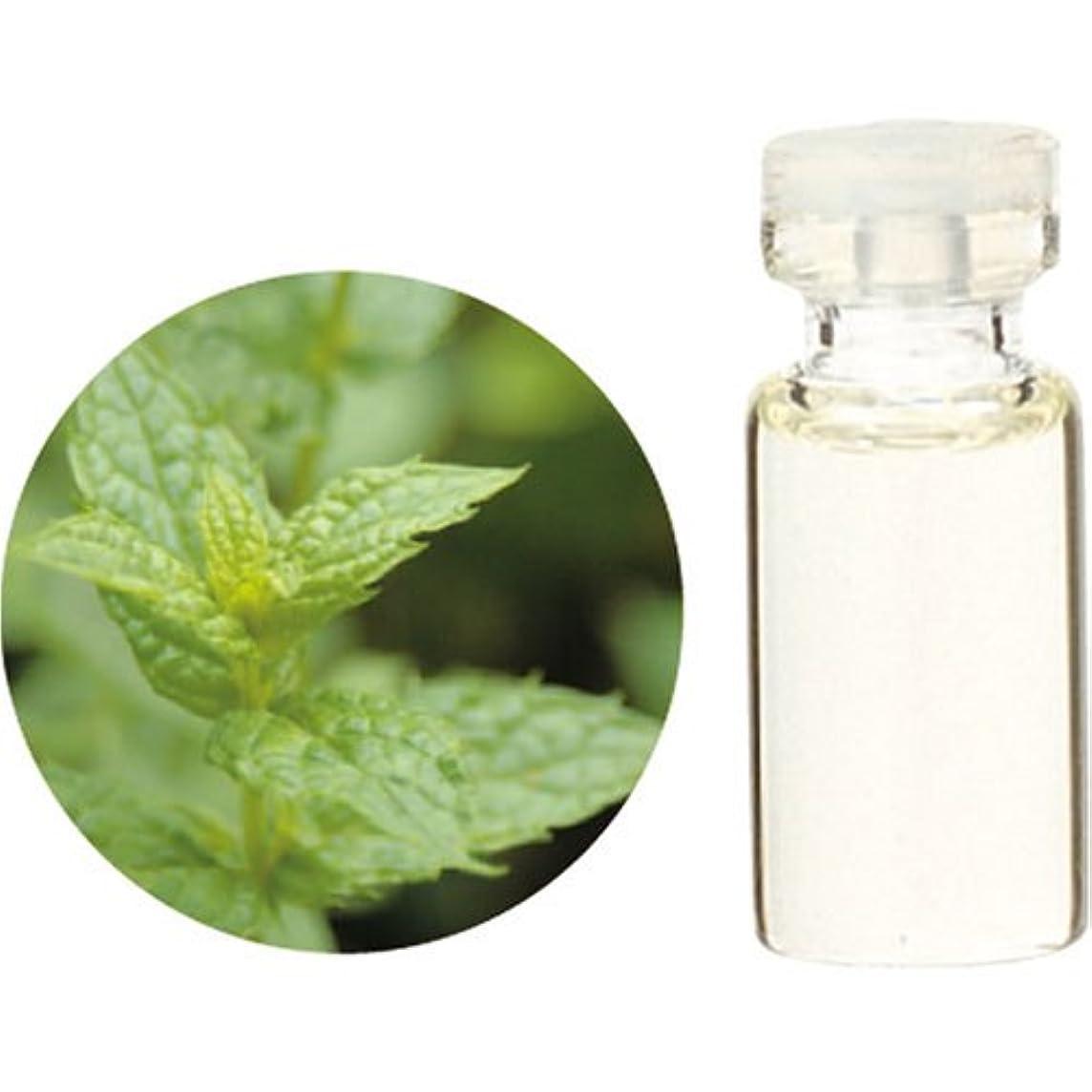 粒美徳圧力Herbal Life スペアミント 10ml