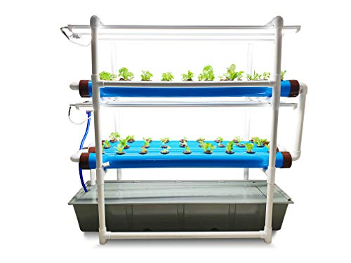 Pindfresh Hydroponics Kit for Home - The Tashi Junior Indoor NFT Hydroponic System with Grow Lights for Growing 54 Leafy Greens - All Inclusive hydroponics kit from Seed to Harvest.