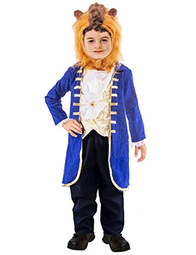 YuDanae Prince Dress Up Costume Cosplay Pretend Play Halloween Party for Toddlers Kids Boys Aged 2-12 (Blue, Tag S(4T-6T))