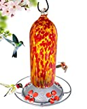 Grateful Gnome - Hummingbird Feeder - Hand Blown Glass - Fiery Bell Tower - 20 Fluid Ounces Free...