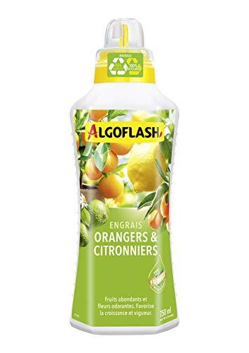 ALGOFLASH Engrais Orangers et Citronniers, Bouchon Doseur Inclus, 750 ml, ALIAGR750N