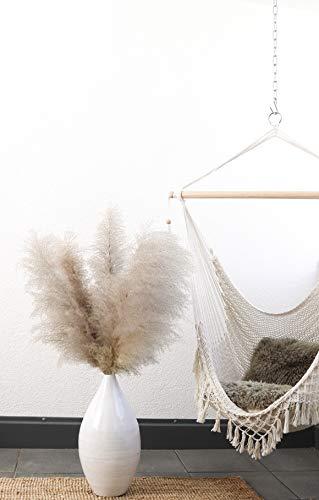 Rey Label Pampasgras, natürlich getrocknet - vom Hochzeits-Trend zum Interior-Liebling! (Naturfarben)