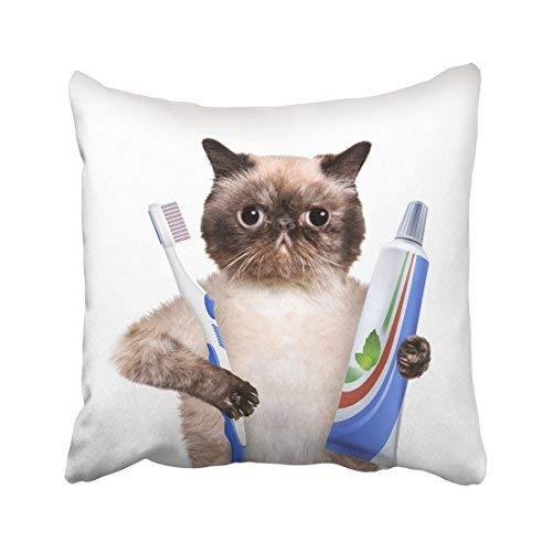 GFGKKGJFD313 Funda de Almohada para decoración del hogar, 20 x 20 cm, diseño de Animales, Color Blanco