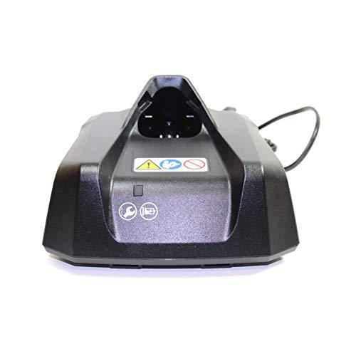 Stihl Cargador de batería AL 1 para GTA 26, HSA 26