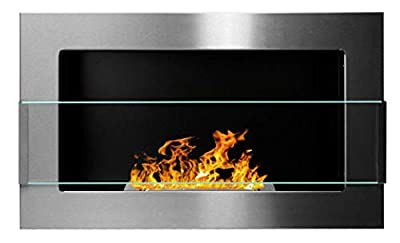 Bio Ethanol Fire BioFire Fireplace Modern 650 x 400 Stainless steel with glass