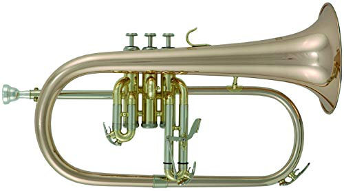 Roy Benson Bb Flügelhorn MOD.FH-302G Goldmessing Schall, inkl. Etui