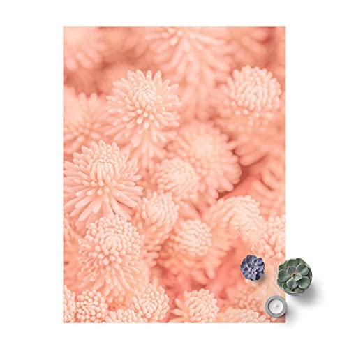 Bilderwelten Tapis en Vinyle - Light Pink Floral Magic Sedum - 180 × 135 cm, Matériel:Vinyle