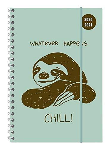 Collegetimer Chill! 2020/2021 - Schüler-Kalender A5 (15x21 cm) - Faultier - Ringbindung - Weekly - 224 Seiten - Terminplaner - Alpha Edition (Collegetimer A5 Ringbuch)