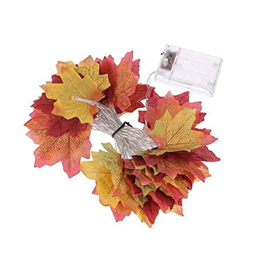 SXYRN Hojas de Arce Luz de otoño Luz de Arce Luces de Guirnalda de otoño Luz de acción de Gracias Luces de decoración de acción de Gracias para el hogar, 1 Uds 4M