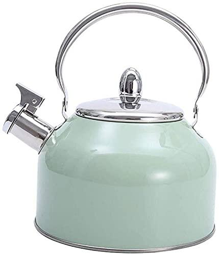 Hervidor de té con mango antiescaldado de acero inoxidable verde, ollas para estufa, estufa de gas de cocina de inducción adecuada de menta de 2,5 cuartos