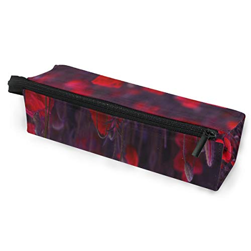 SLHFPX Red Poppies Blossom Wild Glasses Case Travel Soft Sunglasses Ball Pen Bag Protective Box