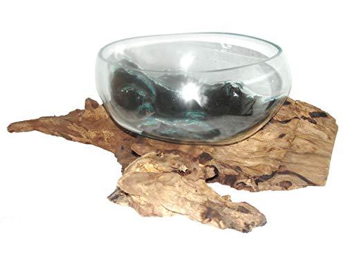 Deko Glasschale Ø 30 cm Obstschale Blumenschale auf Wurzel-Holz, Vase Schale mit Treib-Holz Dekovase Dekoschale charakteristische Dekoration