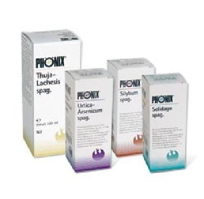 PHÖNIX-Set zur Entgiftungstherapie,1Set