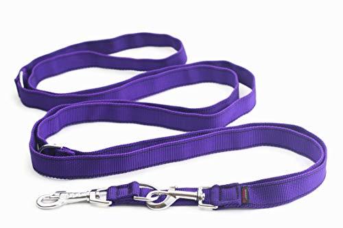 DogDirect London Laisse pour Chien réglable de...