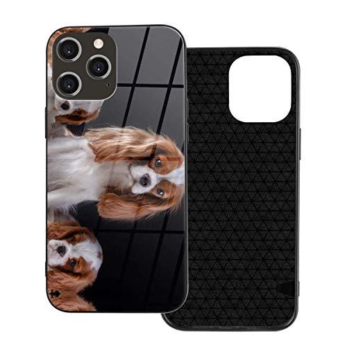 DJNGN per iPhone 12 Custodia protettiva in vetro Cavalier King Slim Custodie per cellulariCover per donne e ragazze adolescenti per iPhone12