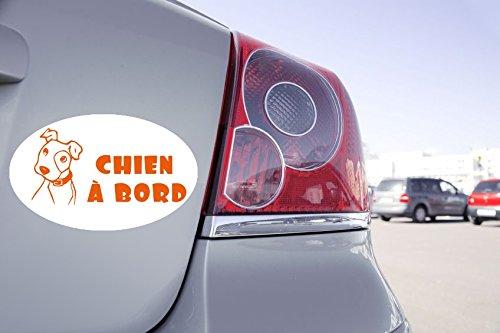 Zone-Stickers Sticker Voiture Chien à Bord - 15cm x 9cm, Orange