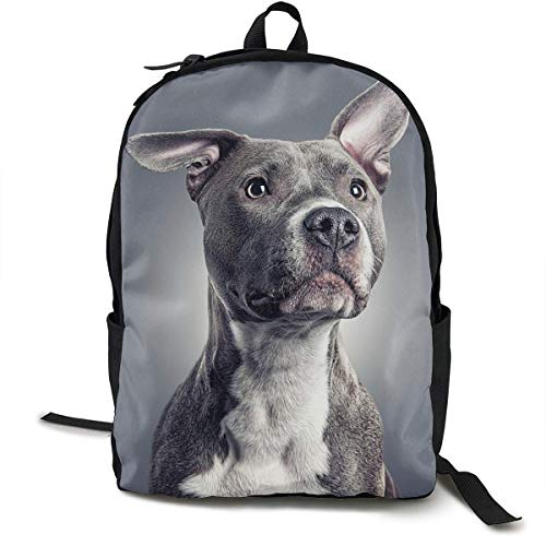 Pit Bull Dog Pet Design Travel Computer Bag Laptop Backpack Unisex, School College Fits 15'' Laptop