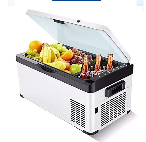 Refrigerador eléctrico para Coche, 12 V CC, refrigerador y ...