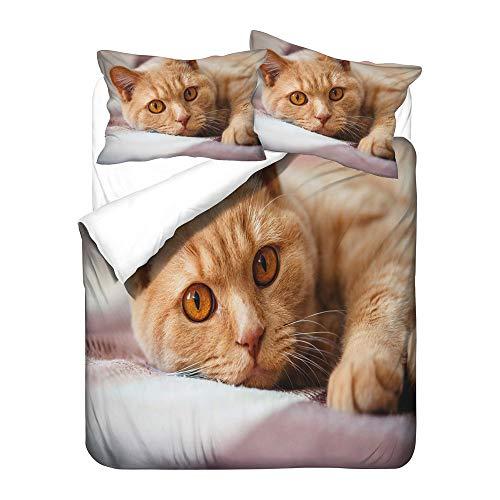 WFBZ Bedding Set 3D Black Cat Pattern Zip Closure Lightweight Microfibre Duvet Cover & Pillowcase Single Size Double King Size Animal Quilt Set, 12, 220x240