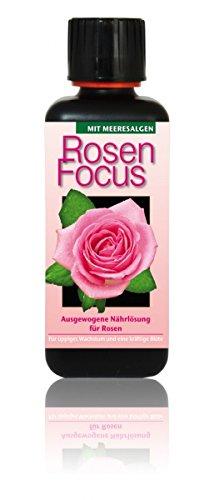 Dünger Rosen Focus 300ml Flüssigdünger Konzentrat Rose Rosendünger