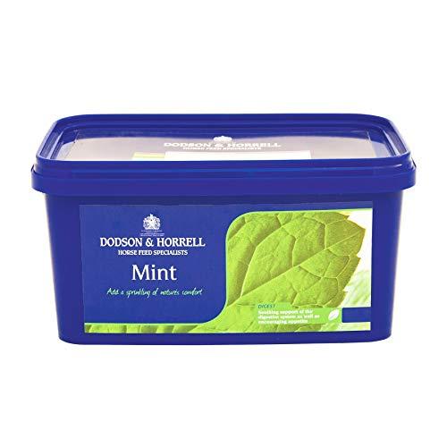 Dodson & Horrell Mint Tub for Horses, 1 kg
