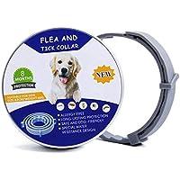 Yohota Flea & Tick Prevention Natural Herbal Oil for Dogs