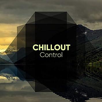 # 1 A 2019 Album: Chillout Control
