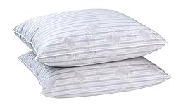 Blanc rêve Lot de 2 oreillers Plumes véritables 60 x 60 Confort Moelleux