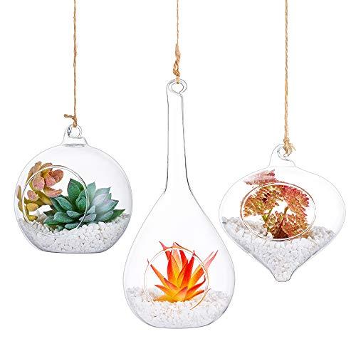 3 PCS Hanging Glass Terrarium Globes Glass Ornament with Twine Rope Balls Decorations Air Plants Hanger Vase Christmas, Halloween Centerpieces for for Succulent, Moss, Tillandsias, Air Ferns