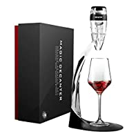 AWANFI Decanter per Vino, Decanter Deluxe Calici Vino con Filtro per Vino Rosso e Bianco, Accessori con Base per Vini Rosso, Regalo casa Nuova Arredamento, Accessori Vino Set da Regalo