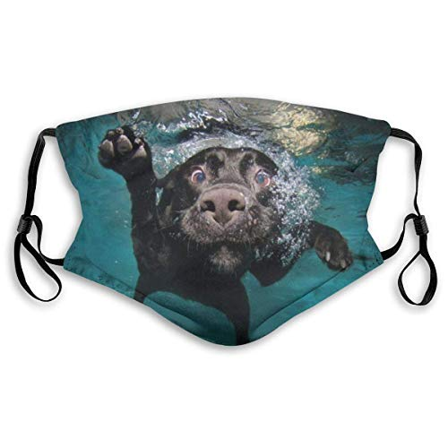 Schwarzer Labrador Retriever Hund, der mit ausdrucksstarkem Gesicht schwimmt Männer 'S und Frauen filtern verstellbare Masken
