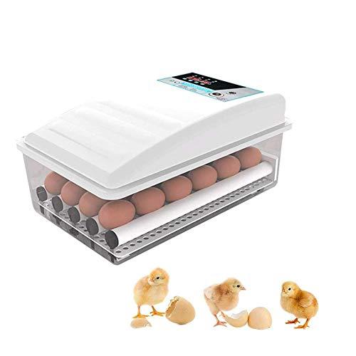 Incubadoras de Huevos con Giro automático, Control de Temperatura de la incubadora de 12 Huevos para incubar Aves de gallina, Pato, Ganso, Doble Potencia