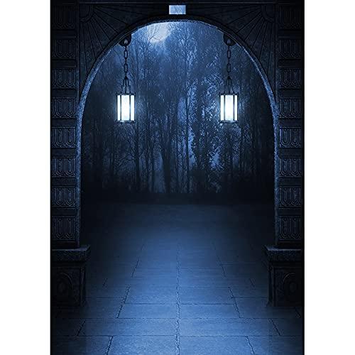 Fondo de fotografía de Retrato de bebé con Ventana de Arco de Palacio Antiguo de Cuento de Hadas gótico Fondo de Foto de Halloween A8 10x10ft / 3x3m