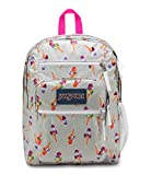 JANSPORT Cones and Scoops Big Student Backpack