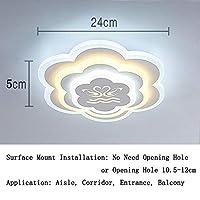 ポーチ アクリル Led 天井ランプ, モダン 廊下 シーリングライト ランプ フィクスチャ 24 W 表面実装 壁 シャンデリア の 通路 入り口 バルコニー-i 直径24cm