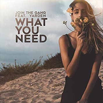 What You Need (feat. Yarden)