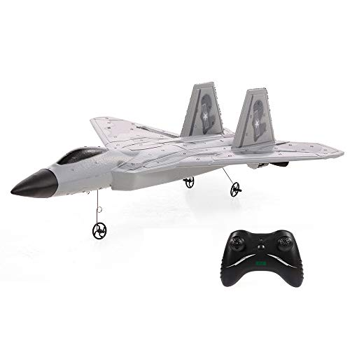 Goolsky FX822 F-22 Raptor Model Fighter Airplane 2CH EPP 2.4G Remote Control Airplane Fixed-Wing RTF Toy