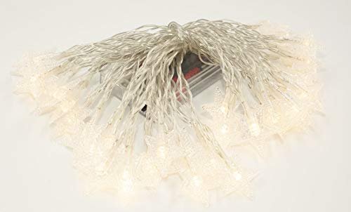 Happium - Cadena de luz de hadas con 40 luces LED de color blanco cálido de 6 m