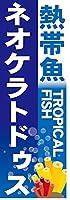 『60cm×180cm(ほつれ防止加工)』お店やイベントに! のぼり のぼり旗 熱帯魚 TROPICAL FISH ネオケラトドゥス(青色)