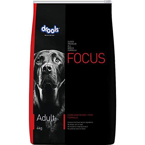 Drools Focus Adult Super Premium Dog Food, 4kg