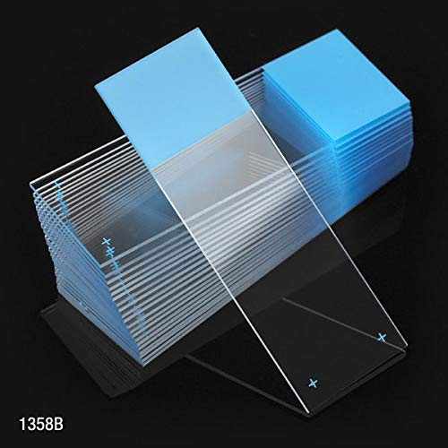 Microscope Slides, Diamond White Glass, 25 x 75mm, Charged, 90° Ground Edges, Blue Frosted, 72/Box, Box of 72