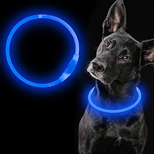 iTayga LED Dog Inventory cleanup selling sale Collar USB Direct store Rechargeable Adjus Up Light