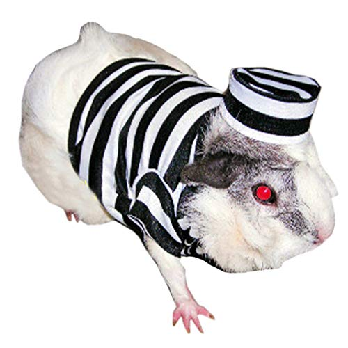 Alfie Pet - Ray Prisoner Costume for Small Animals Like Dwarf Hamster and...