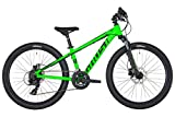 Ghost Kato D4.4 AL U 24R Kinder & Jugend Mountain Bike 2019 (32cm, Riot Green/Jet Black)