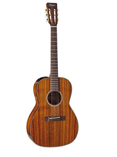 Gitarre Takamine (Musikinstrumente) New Yorker Electro