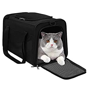 WDM Pet Travel Carrier Bag – Airline Approved Soft Sided Folding Pet Cage with Locking Safety Zippers, Removable Fleece Pad and Pockets for Small Medium Cats Dogs Puppies (M, Black)