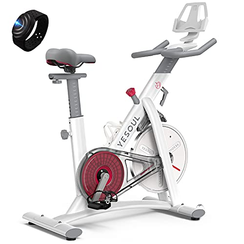 YESOUL Smart Connect Exercise Spin Bike Stationary with...
