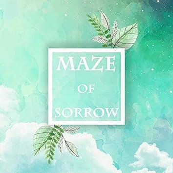 Maze of sorrow